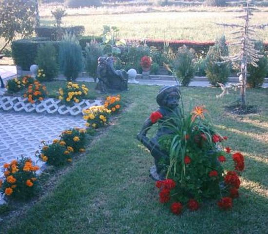 *beautiful garden*